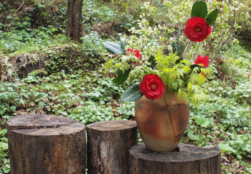 たからの庭花3